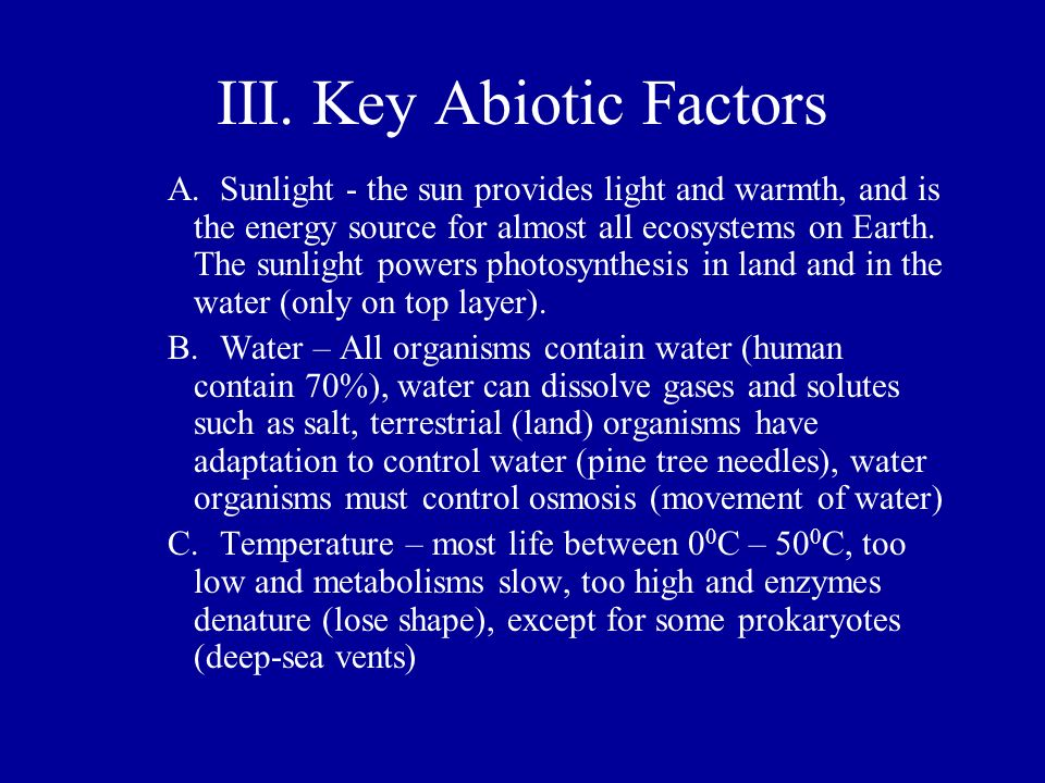 III. Key Abiotic Factors A.Sunlight - the sun provides light and warmth, and is the energy source for almost all ecosystems on Earth. The sunlight pow