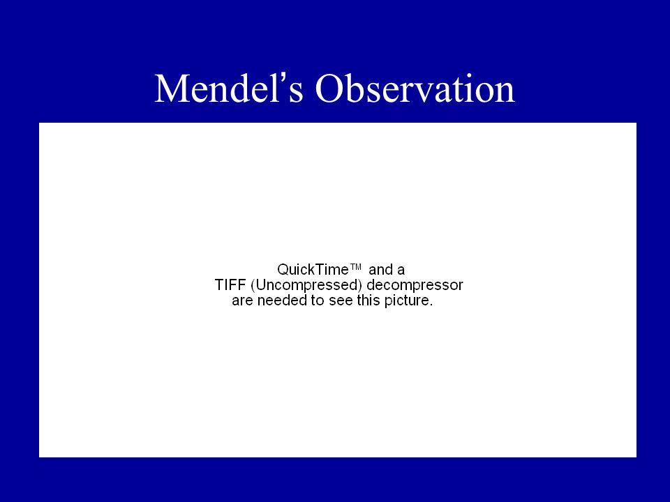 Mendel s Observation
