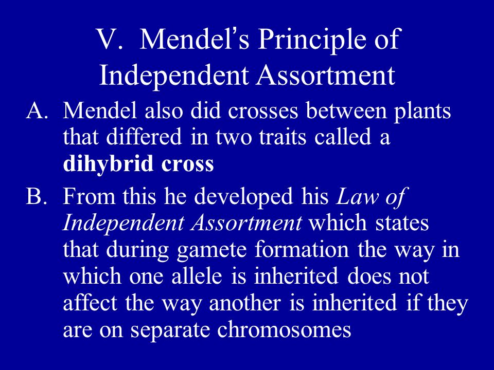 V. Mendel s Principle of Independent Assortment A.Mendel also did crosses between plants that differed in two traits called a dihybrid cross B.From th
