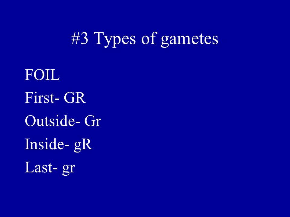 #3 Types of gametes FOIL First- GR Outside- Gr Inside- gR Last- gr