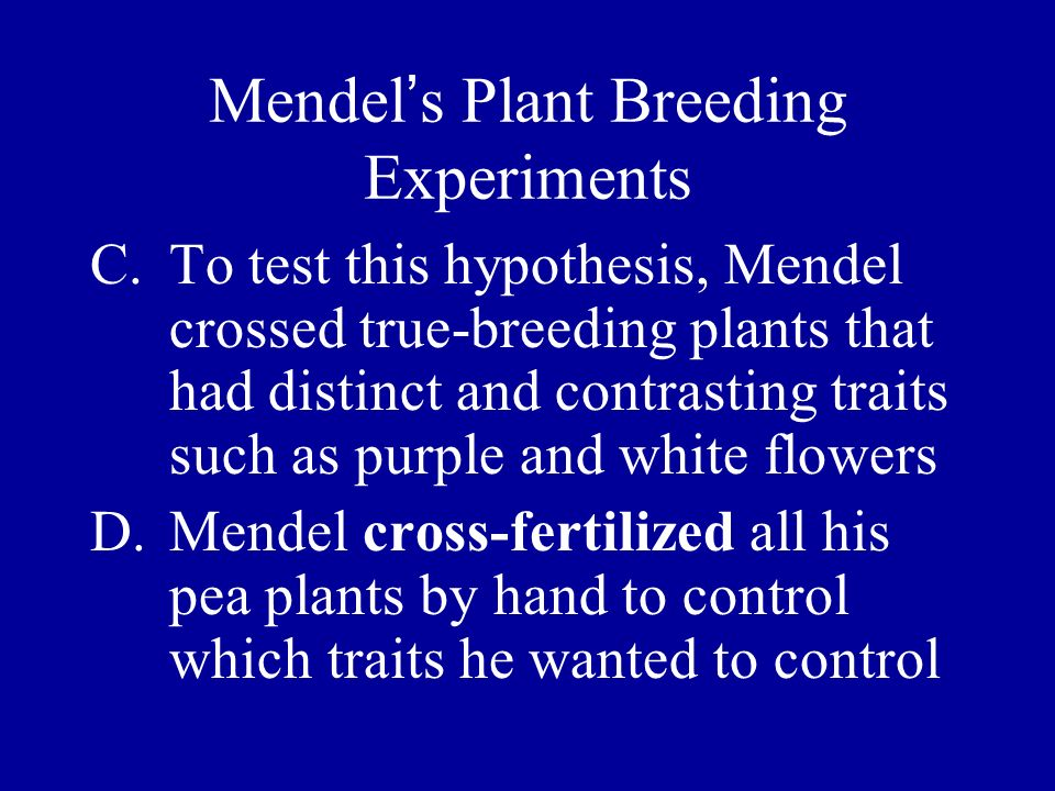 Mendel s Plant Breeding Experiments C.To test this hypothesis, Mendel crossed true-breeding plants that had distinct and contrasting traits such as pu