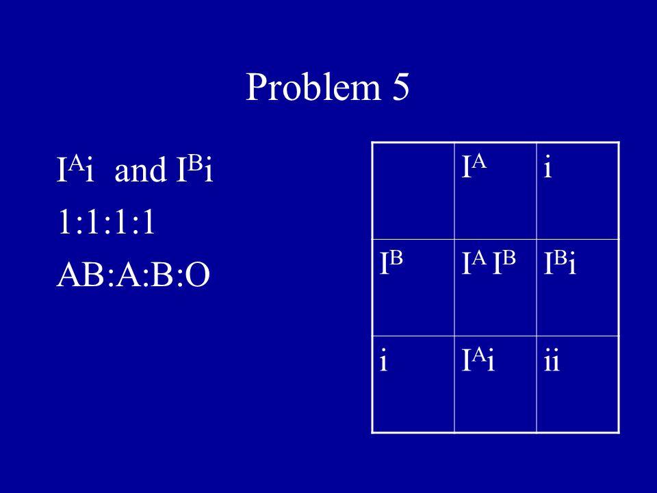 Problem 5 I A i and I B i 1:1:1:1 AB:A:B:O IAIA i IBIB I A I B IBiIBi iIAiIAiii