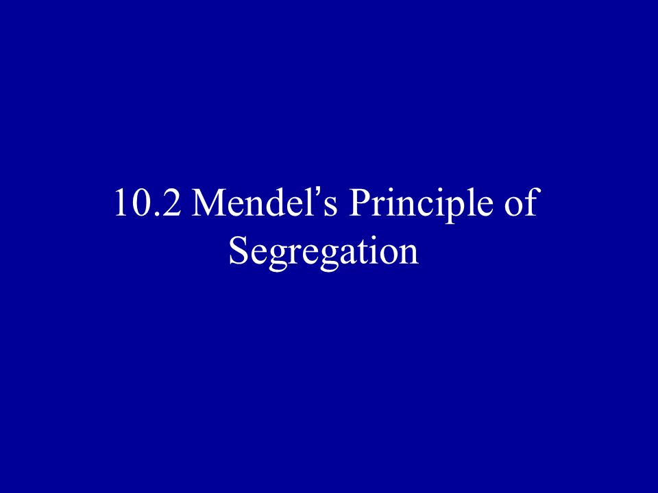 10.2 Mendel s Principle of Segregation