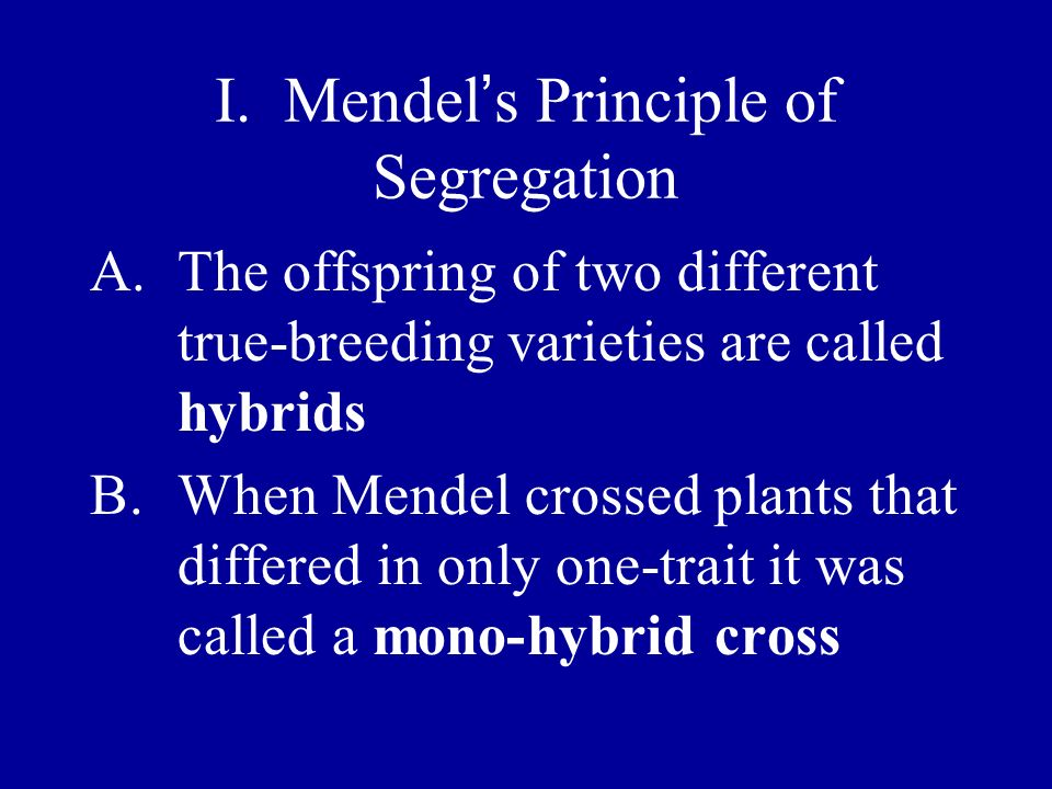 I. Mendel s Principle of Segregation A.The offspring of two different true-breeding varieties are called hybrids B.When Mendel crossed plants that dif