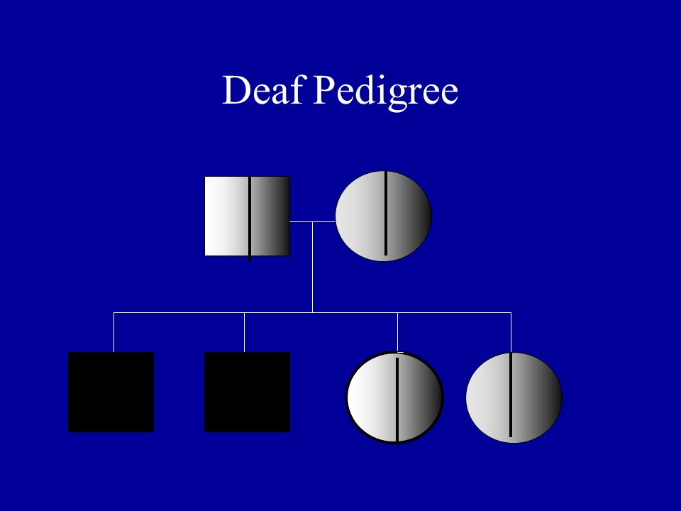 Deaf Pedigree