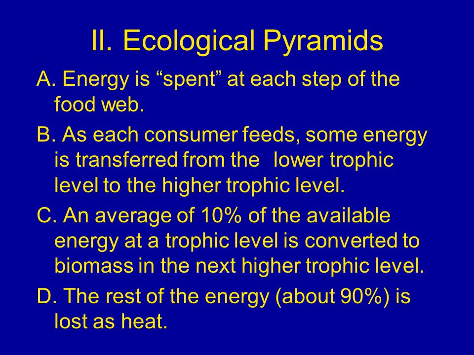 II. Ecological Pyramids A. Energy is spent at each step of the food web. B. As each consumer feeds, some energy is transferred from the lower trophic
