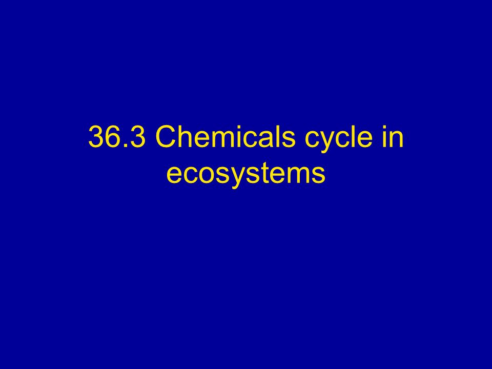 36.3 Chemicals cycle in ecosystems