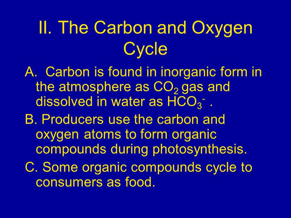 II. The Carbon and Oxygen Cycle A. Carbon is found in inorganic form in the atmosphere as CO 2 gas and dissolved in water as HCO 3 -. B. Producers use