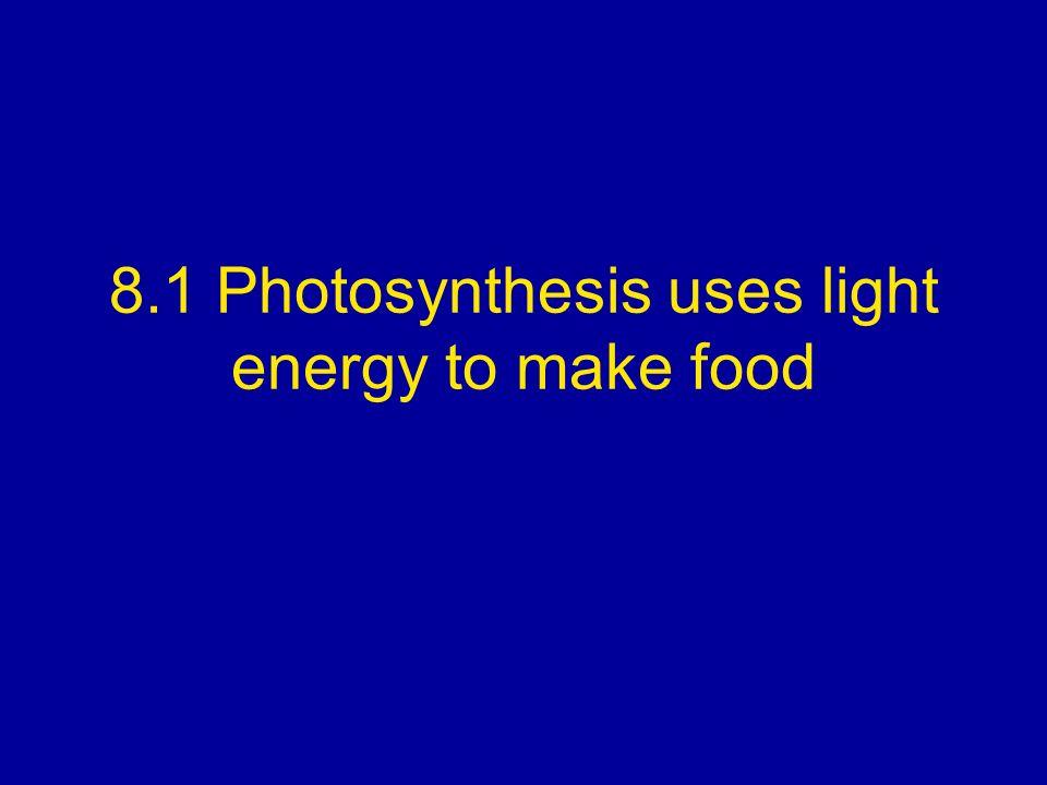 8.1 Photosynthesis uses light energy to make food