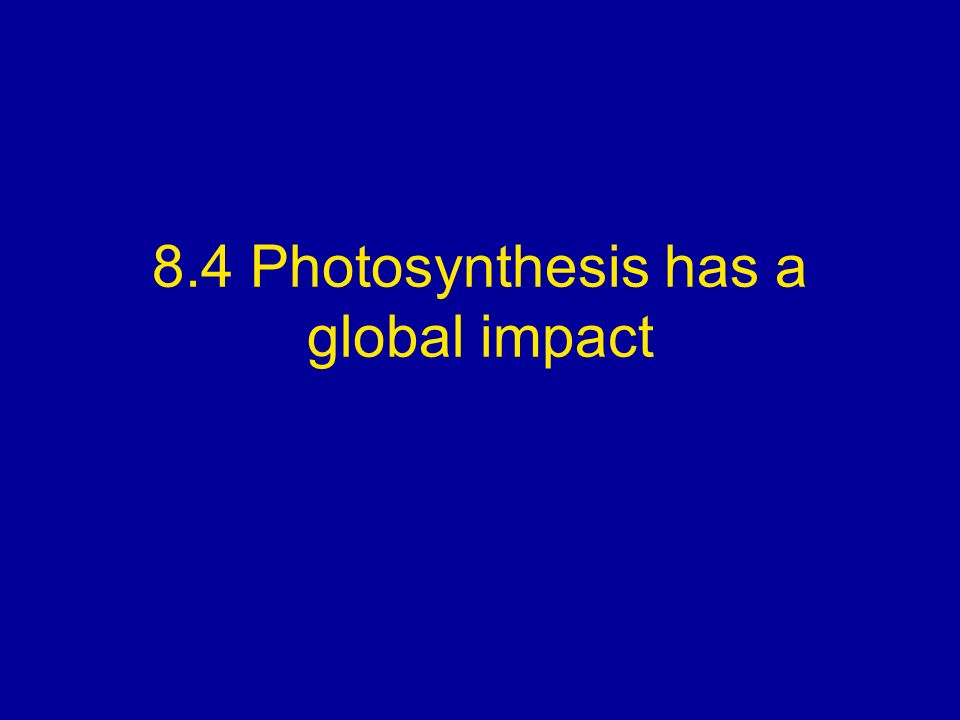 8.4 Photosynthesis has a global impact