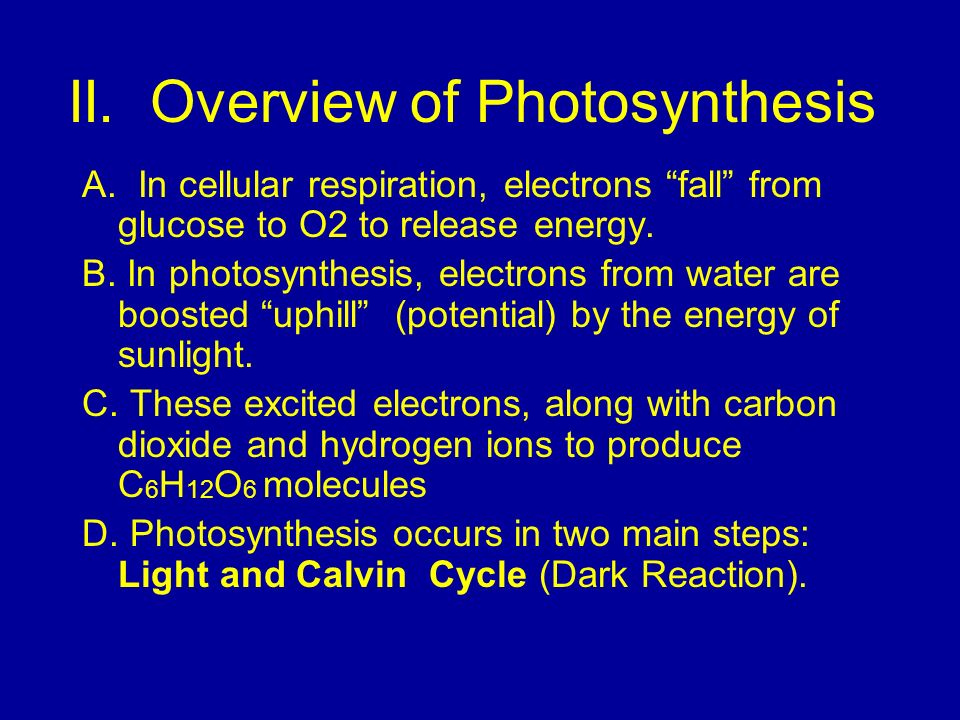 II. Overview of Photosynthesis A. In cellular respiration, electrons fall from glucose to O2 to release energy. B. In photosynthesis, electrons from w