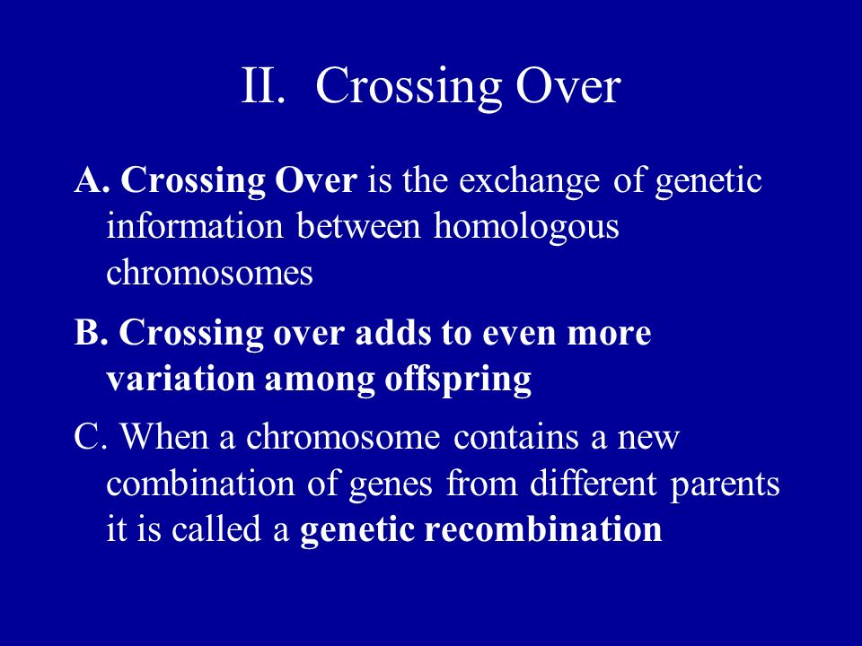 II. Crossing Over A. Crossing Over is the exchange of genetic information between homologous chromosomes B. Crossing over adds to even more variation