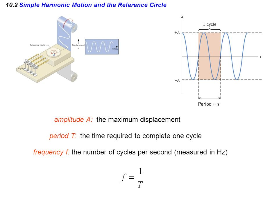10.2 Simple Harmonic Motion and the Reference Circle period T: the time required to complete one cycle frequency f: the number of cycles per second (m