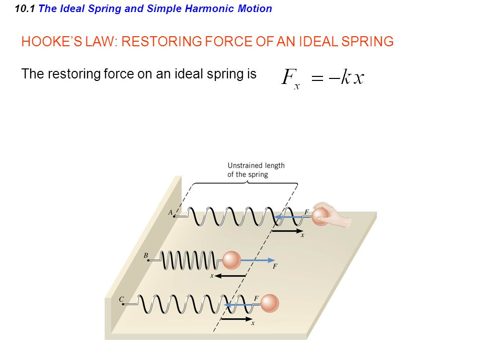 10.1 The Ideal Spring and Simple Harmonic Motion HOOKES LAW: RESTORING FORCE OF AN IDEAL SPRING The restoring force on an ideal spring is