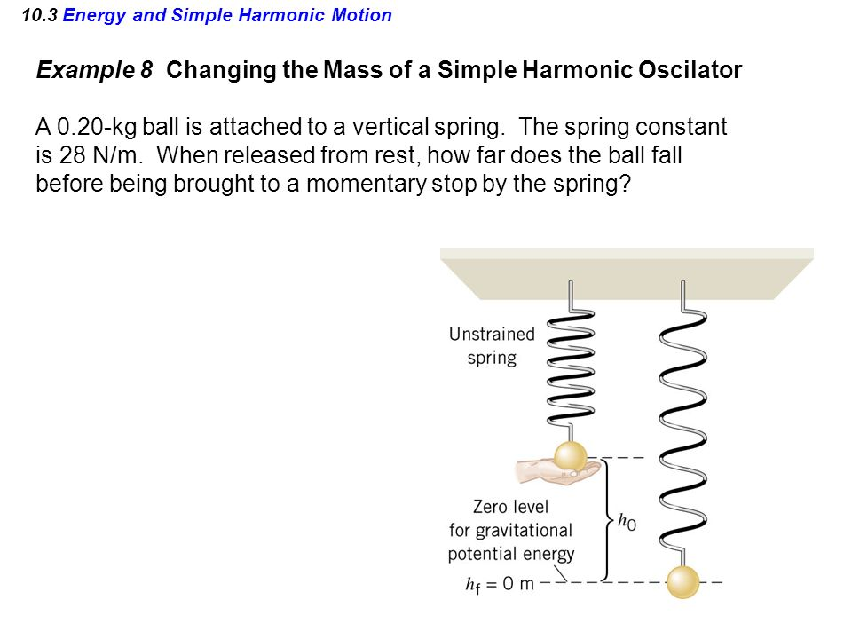 10.3 Energy and Simple Harmonic Motion Example 8 Changing the Mass of a Simple Harmonic Oscilator A 0.20-kg ball is attached to a vertical spring. The