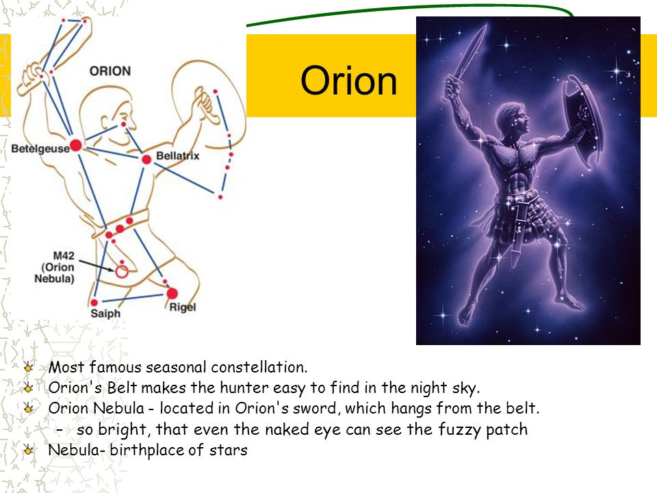 Orion Most famous seasonal constellation. Orion's Belt makes the hunter easy to find in the night sky. Orion Nebula - located in Orion's sword, which