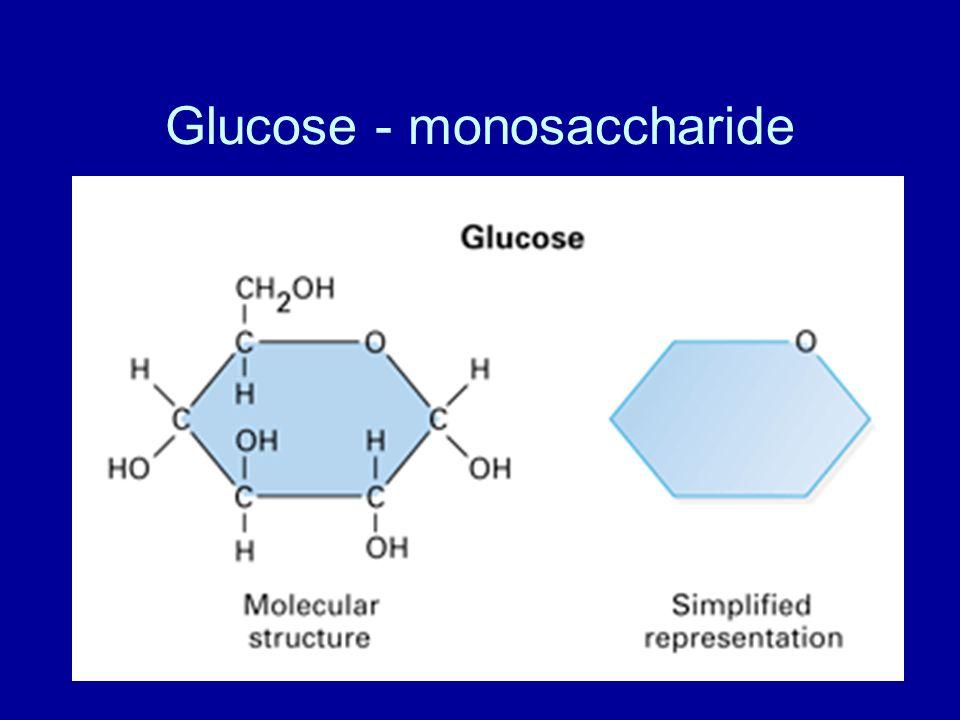 Glucose - monosaccharide