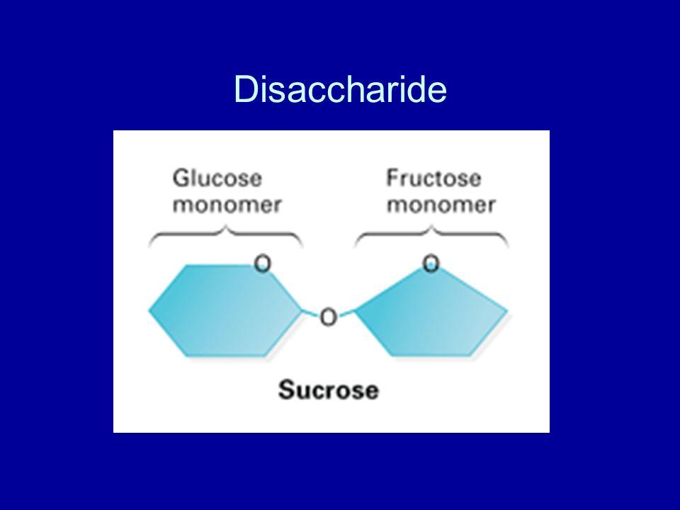 Disaccharide