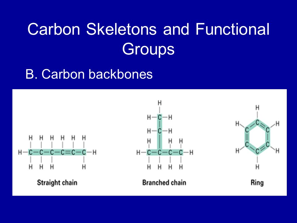 Carbon Skeletons and Functional Groups B. Carbon backbones