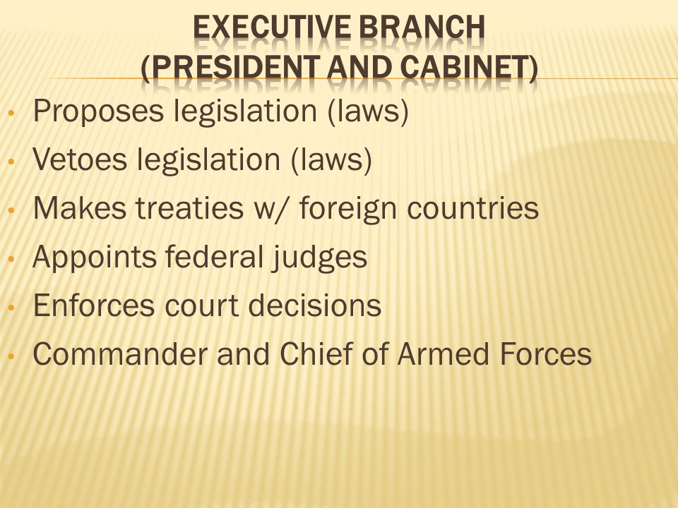 Proposes legislation (laws) Vetoes legislation (laws) Makes treaties w/ foreign countries Appoints federal judges Enforces court decisions Commander and Chief of Armed Forces