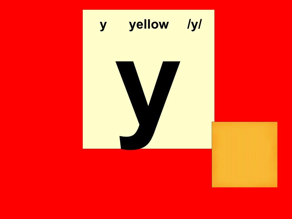y yyellow/y/