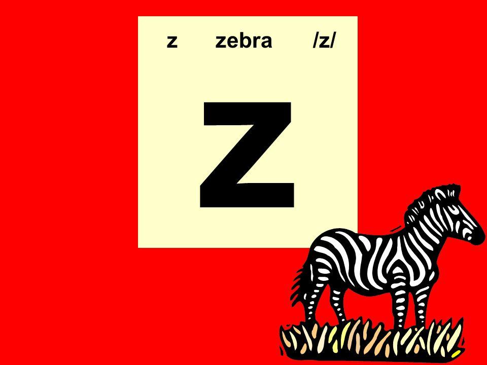 z zzebra/z/