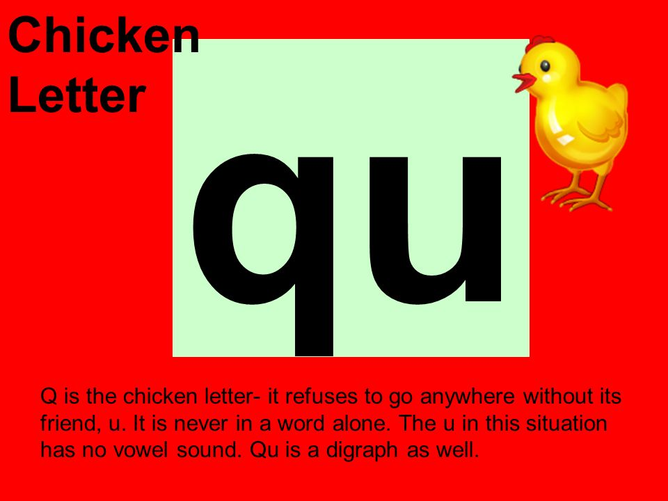 qu Q is the chicken letter- it refuses to go anywhere without its friend, u. It is never in a word alone. The u in this situation has no vowel sound.