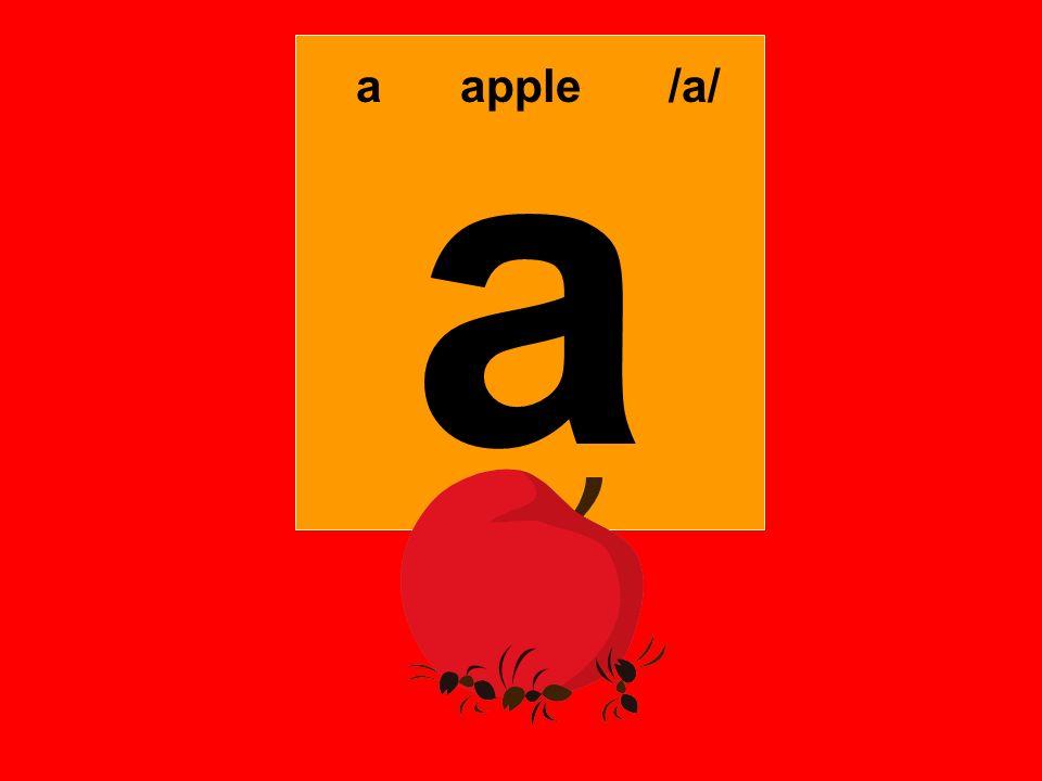 a aapple/a/