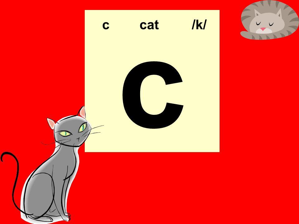 c c cat /k/