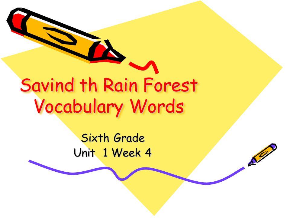 Savind th Rain Forest Vocabulary Words Sixth Grade Unit 1 Week 4