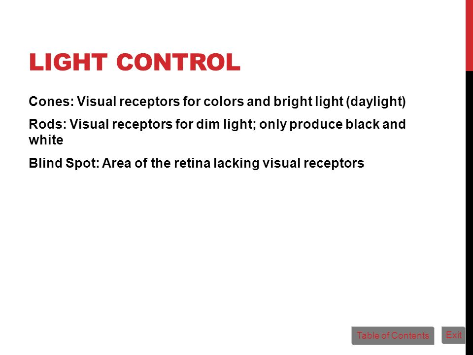 LIGHT CONTROL Cones: Visual receptors for colors and bright light (daylight) Rods: Visual receptors for dim light; only produce black and white Blind