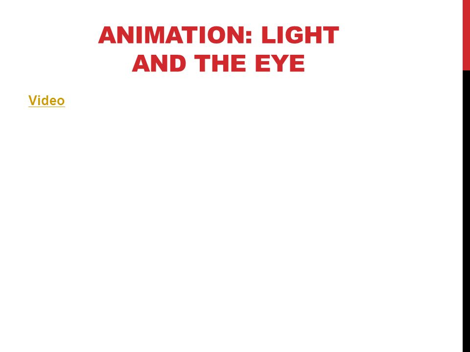 ANIMATION: LIGHT AND THE EYE Video