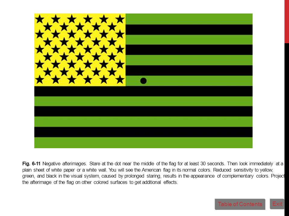 Fig. 6-11 Negative afterimages. Stare at the dot near the middle of the flag for at least 30 seconds. Then look immediately at a plain sheet of white