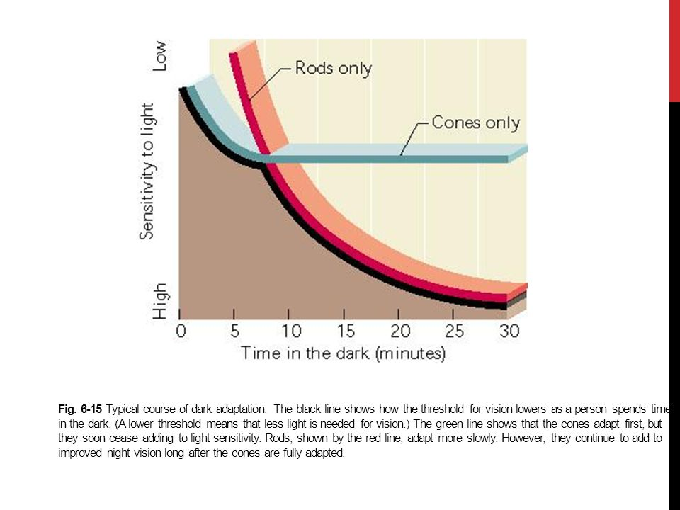 Fig. 6-15 Typical course of dark adaptation. The black line shows how the threshold for vision lowers as a person spends time in the dark. (A lower th