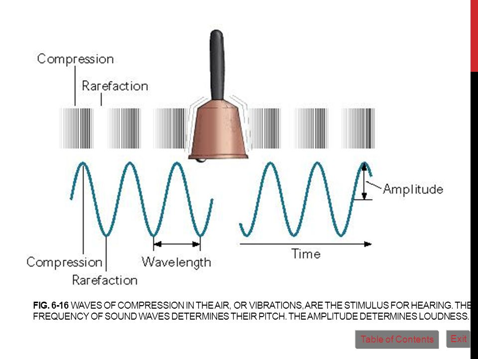 FIG. 6-16 WAVES OF COMPRESSION IN THE AIR, OR VIBRATIONS, ARE THE STIMULUS FOR HEARING. THE FREQUENCY OF SOUND WAVES DETERMINES THEIR PITCH. THE AMPLI