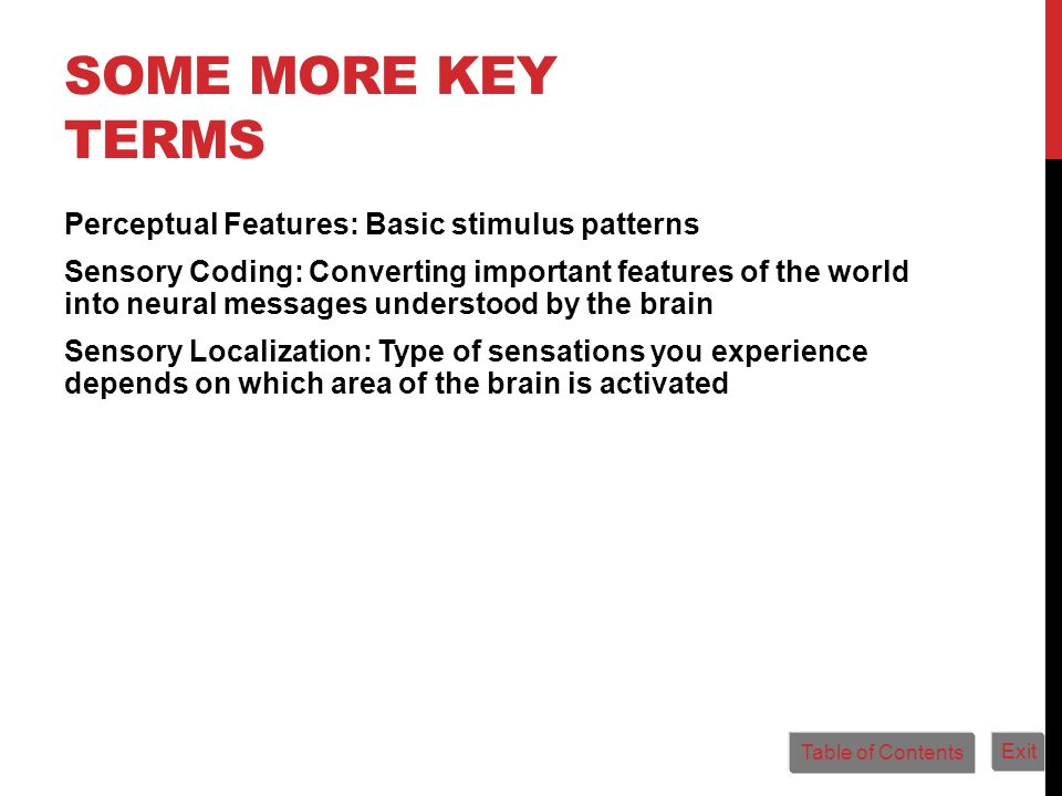 SOME MORE KEY TERMS Perceptual Features: Basic stimulus patterns Sensory Coding: Converting important features of the world into neural messages under