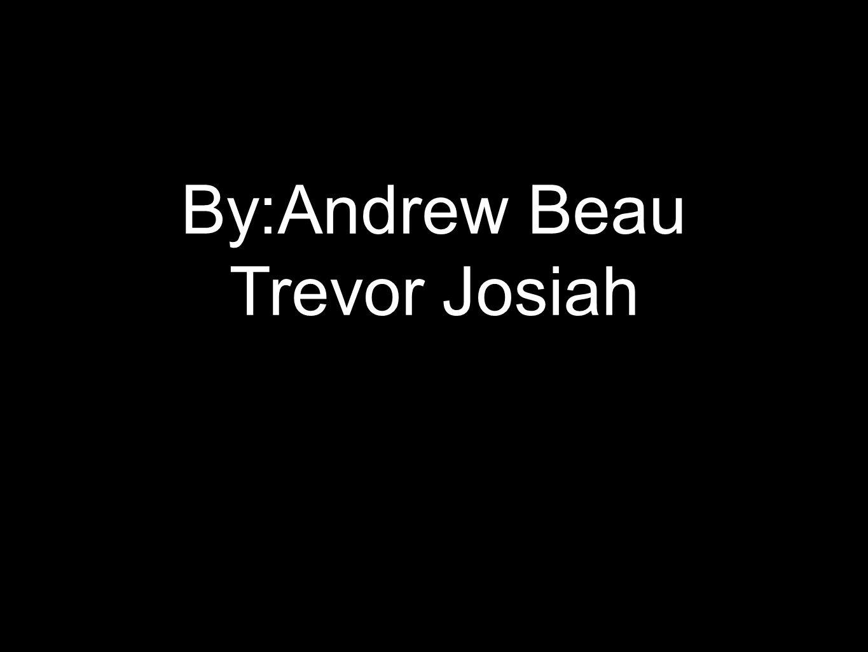 By:Andrew Beau Trevor Josiah