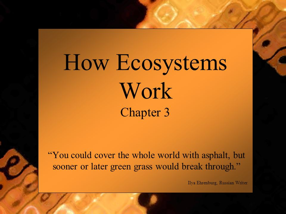 How Ecosystems Work Chapter 3 You could cover the whole world with asphalt, but sooner or later green grass would break through. Ilya Ehrenburg, Russi