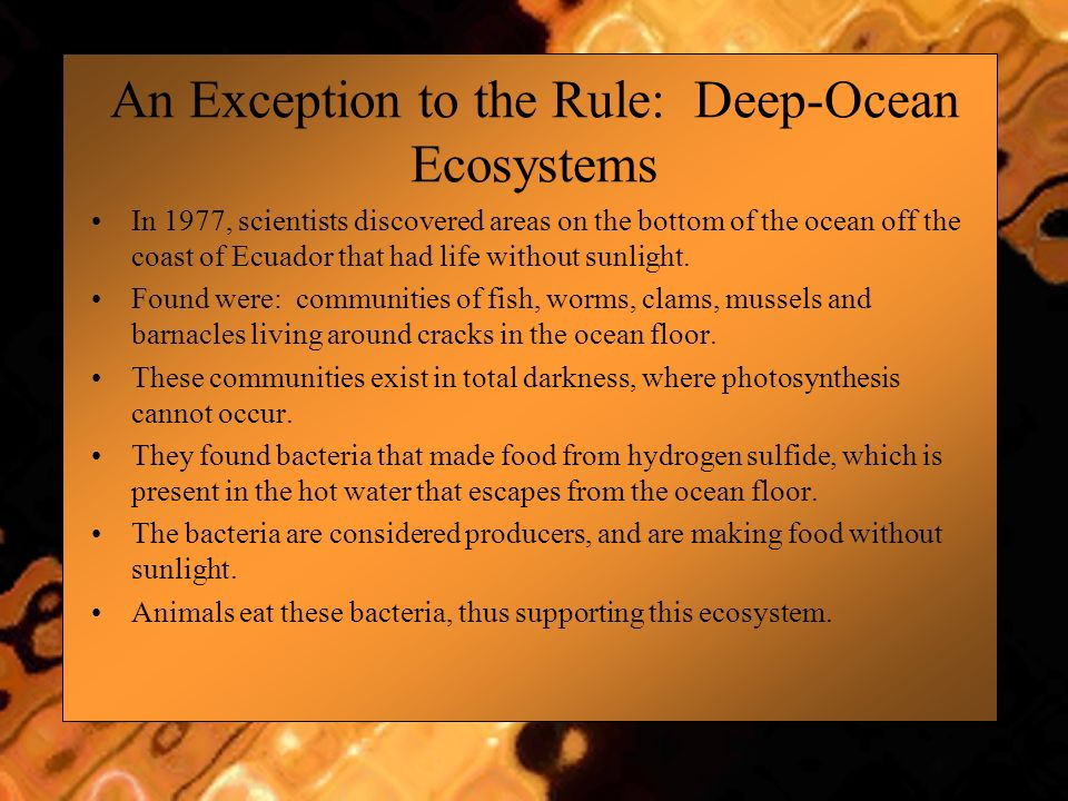 An Exception to the Rule: Deep-Ocean Ecosystems In 1977, scientists discovered areas on the bottom of the ocean off the coast of Ecuador that had life