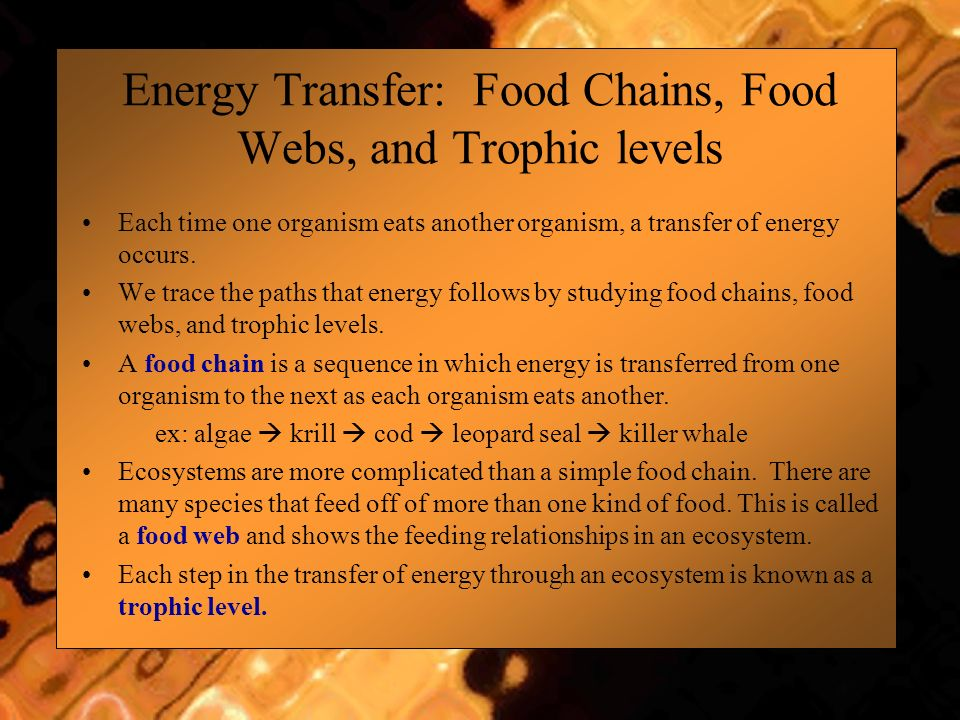 Energy Transfer: Food Chains, Food Webs, and Trophic levels Each time one organism eats another organism, a transfer of energy occurs. We trace the pa