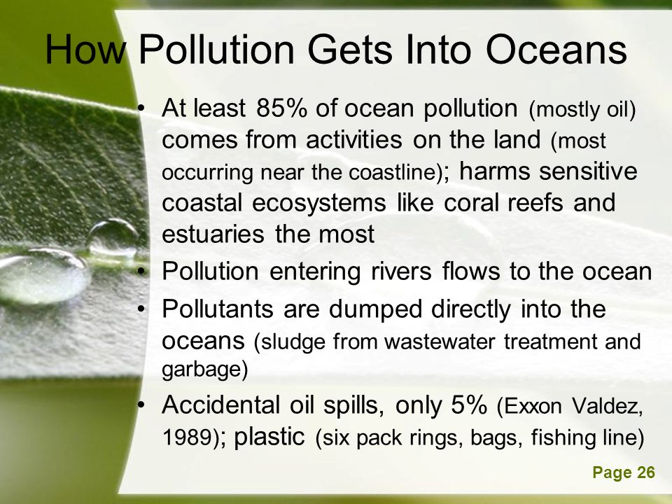 Powerpoint TemplatesPage 26 How Pollution Gets Into Oceans At least 85% of ocean pollution (mostly oil) comes from activities on the land (most occurring near the coastline) ; harms sensitive coastal ecosystems like coral reefs and estuaries the most Pollution entering rivers flows to the ocean Pollutants are dumped directly into the oceans (sludge from wastewater treatment and garbage) Accidental oil spills, only 5% (Exxon Valdez, 1989) ; plastic (six pack rings, bags, fishing line)