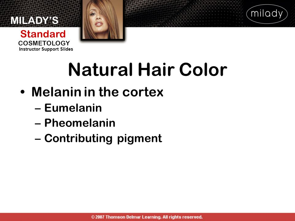 MILADYS Standard Instructor Support Slides COSMETOLOGY Natural Hair Color Melanin in the cortex –Eumelanin –Pheomelanin –Contributing pigment