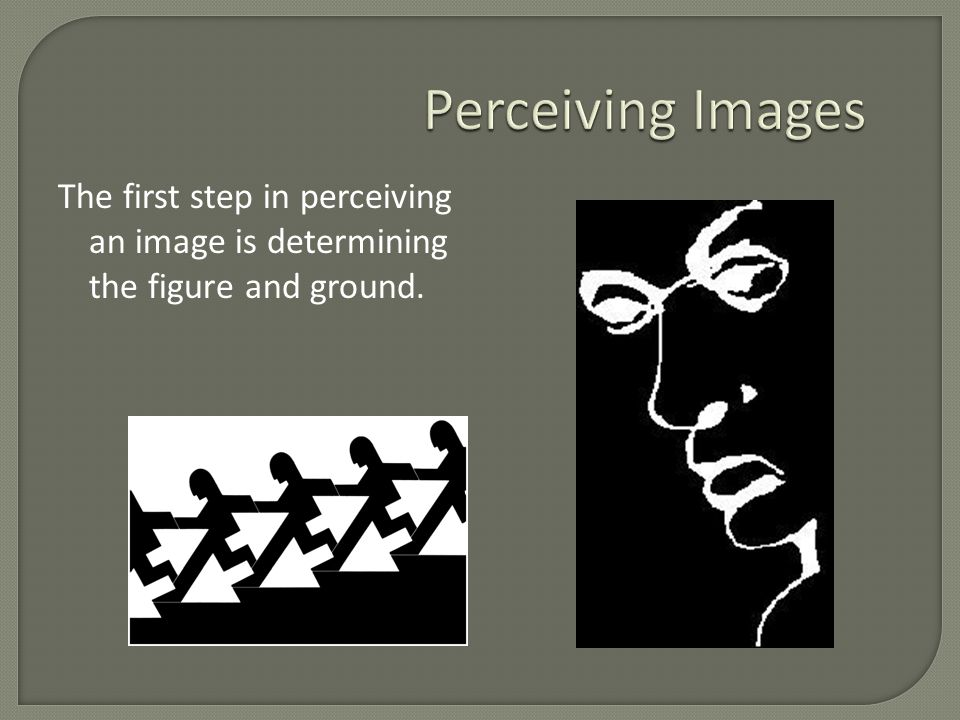 The first step in perceiving an image is determining the figure and ground.