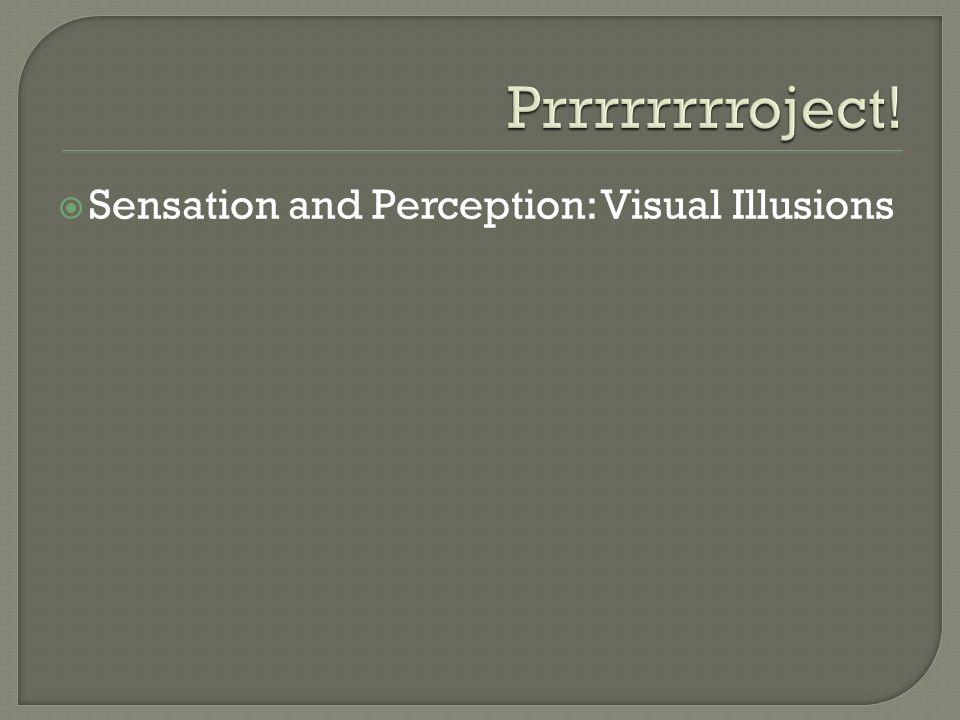Sensation and Perception: Visual Illusions