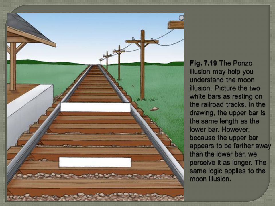 Fig. 7.19 The Ponzo illusion may help you understand the moon illusion. Picture the two white bars as resting on the railroad tracks. In the drawing,
