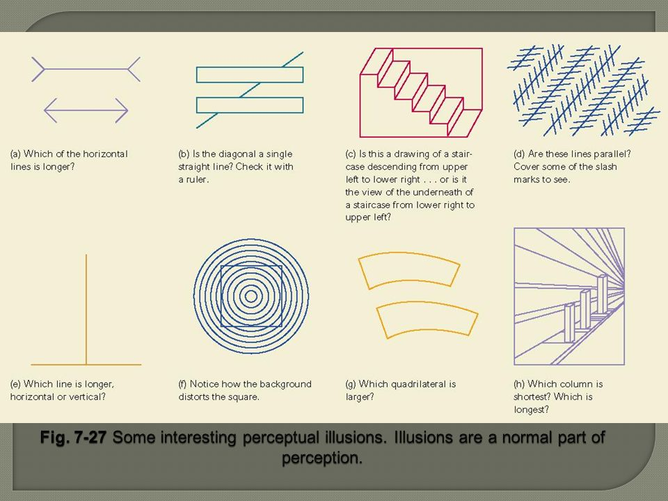Fig. 7-27 Some interesting perceptual illusions. Illusions are a normal part of perception.