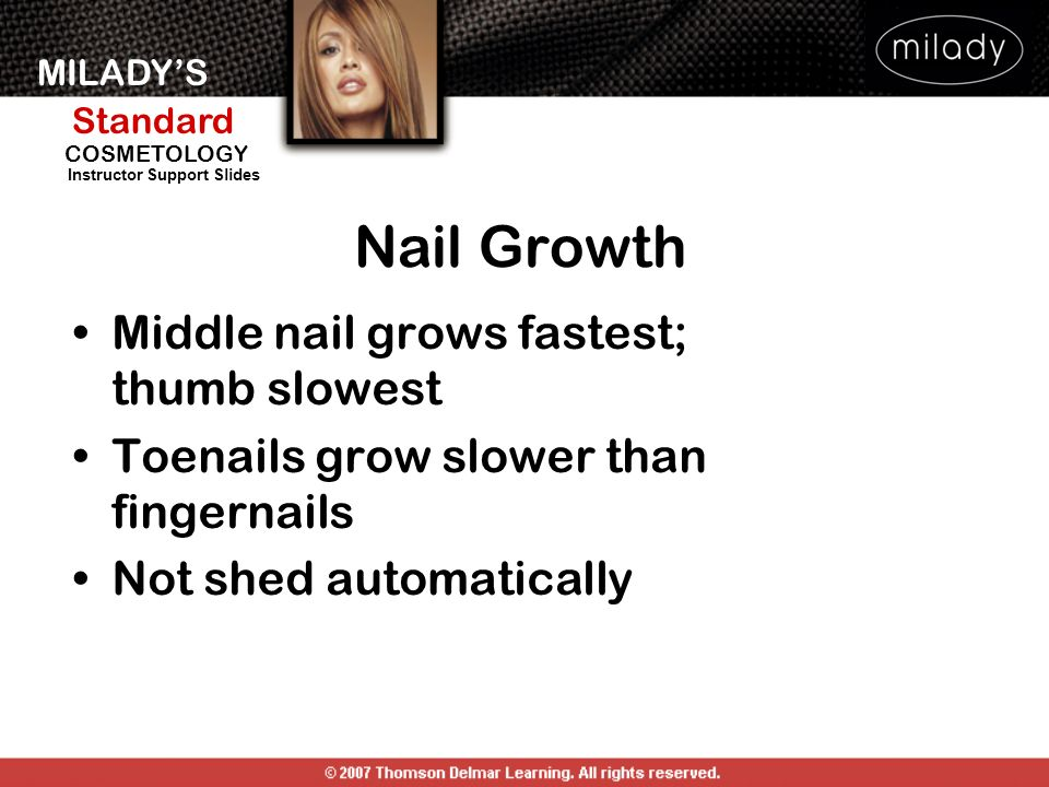 MILADYS Standard Instructor Support Slides COSMETOLOGY Middle nail grows fastest; thumb slowest Toenails grow slower than fingernails Not shed automat