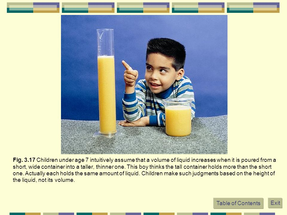 Fig. 3.17 Children under age 7 intuitively assume that a volume of liquid increases when it is poured from a short, wide container into a taller, thin
