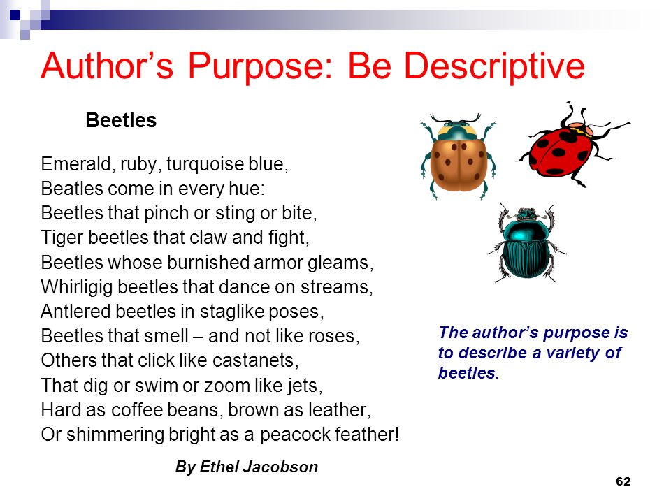 62 Authors Purpose: Be Descriptive Emerald, ruby, turquoise blue, Beatles come in every hue: Beetles that pinch or sting or bite, Tiger beetles that c