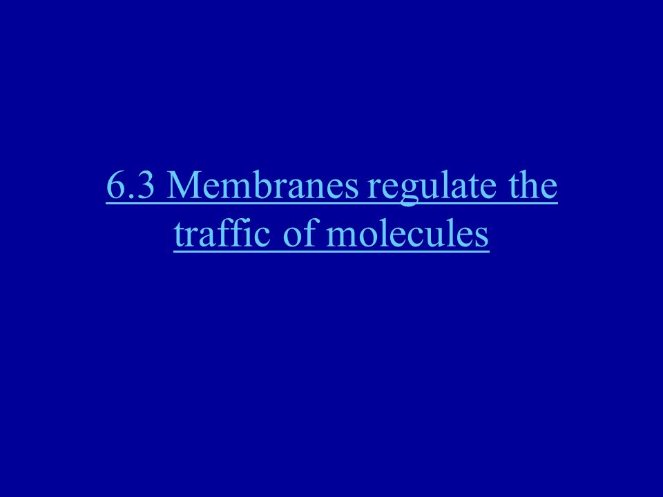 6.3 Membranes regulate the traffic of molecules